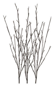 LED Branches from Illuminated Garden