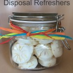 Great Housewarming or Hosting Gift – DIY – How to Make Garbage Disposal Refreshers